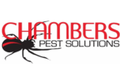 Pest & Insect Control in Perth