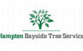 Arborists in Brighton