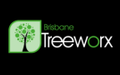 Arborists in Brisbane