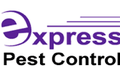 Pest & Insect Control in Darwin