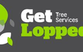 Land & Tree Clearing in Neutral Bay