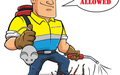 Pest & Insect Control in South Hedland
