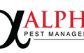 Pest Inspections in Sydney