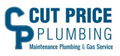 Plumbing Maintenance in Evanston