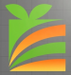 Concrete Repairs & Treatment in Pakenham