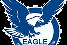 Eagle Security Systems Logo