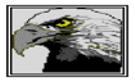 Golden Eagle Design & Construction Logo