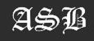 Nasim Tiling Logo