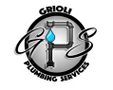 Wet and Wired Electrical and Plumbing Logo