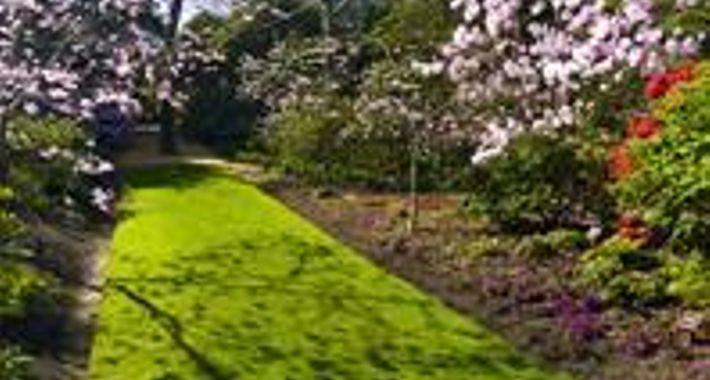 Rod Carver Landscape Logo