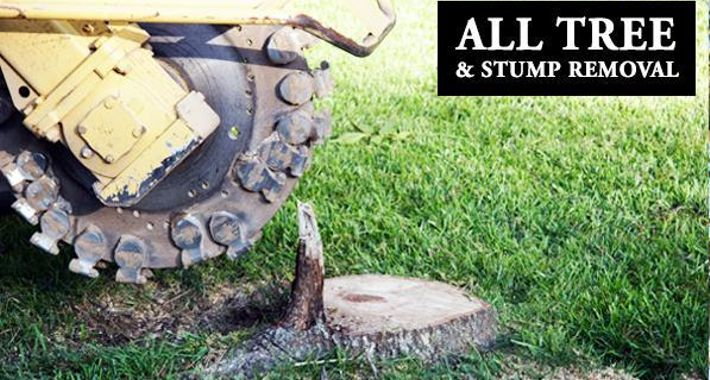 All Tree and Stump Removal Logo