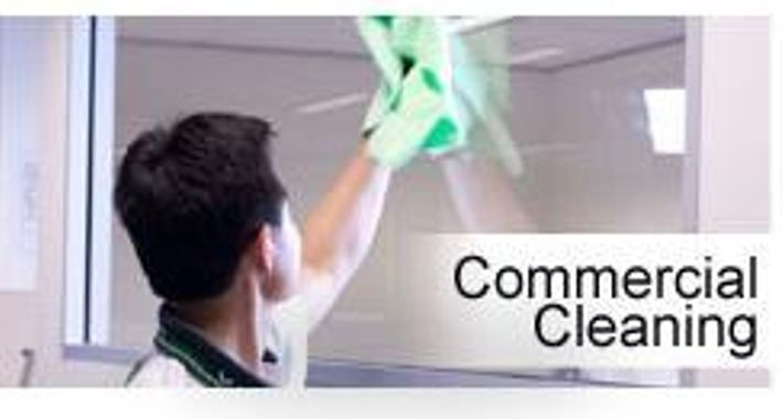 VIP Home Cleaning Services Logo