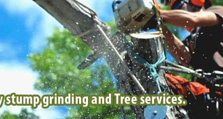 Chatswood Tree Services Logo