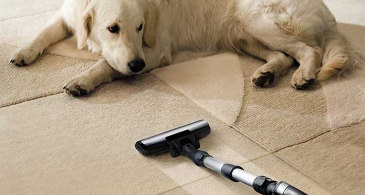 Good Clean Sweep Logo