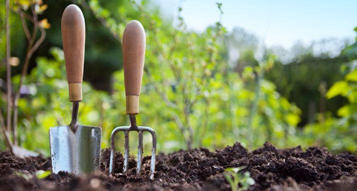 2257 Horticultural Services Logo