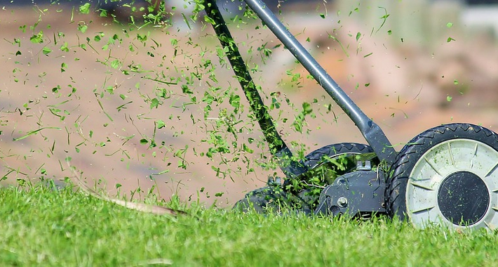 D & L's Lawn Mowing and Garden Maintenance Logo