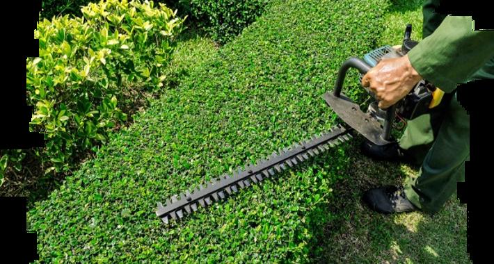 MowManiac Lawn and Yard Maintenance Logo