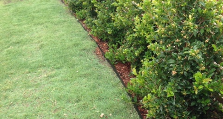 Able Lawns & Gardening Service Logo