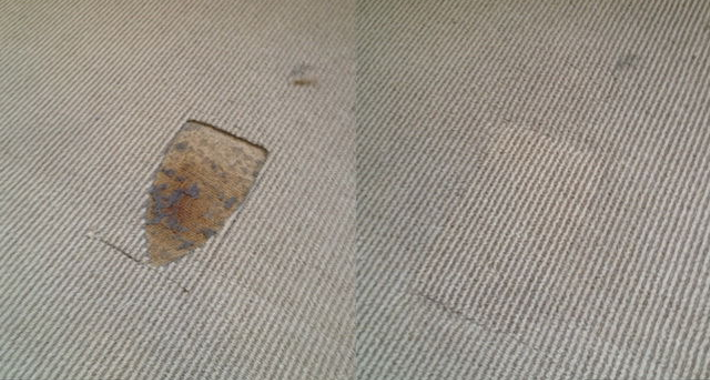 Carpet Doctor Brisbane Logo