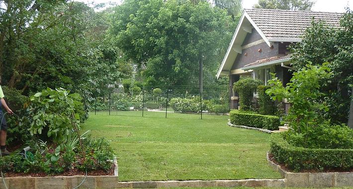Southern Star Gardens Logo
