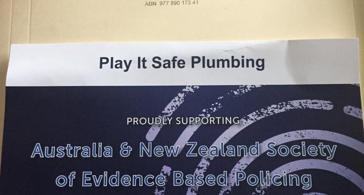 Play it Safe Plumbing Logo
