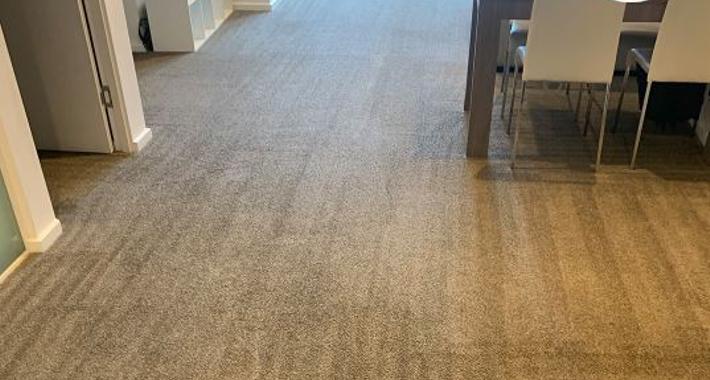 Best Carpet Cleaning Melbourne Logo
