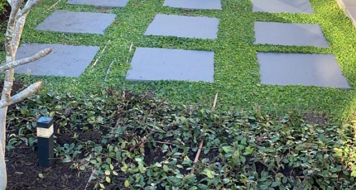 MR Gardens Logo