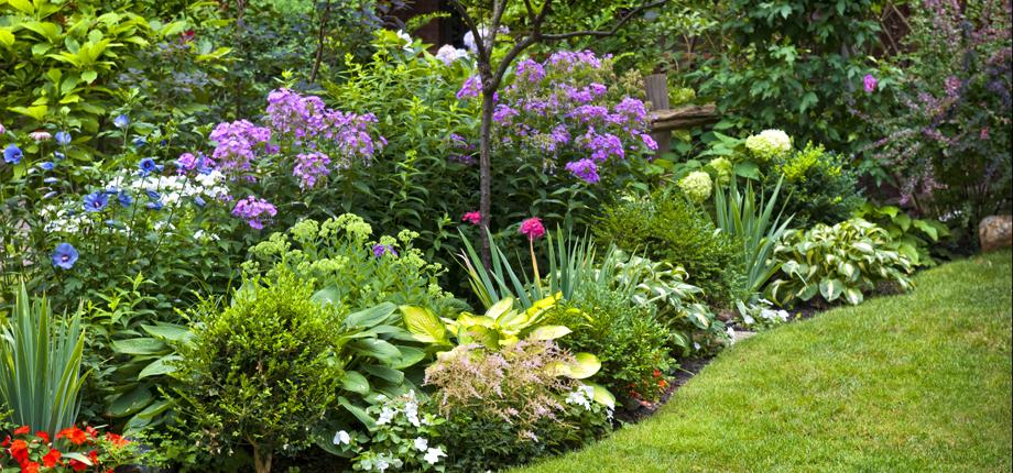 sustainable-garden2.jpg