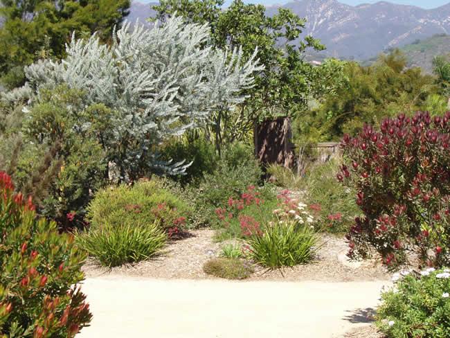 sustainable-garden4.jpg