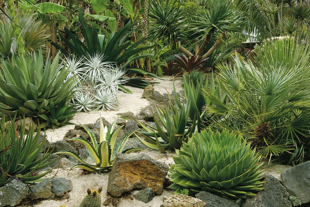 sustainable-garden5.jpg