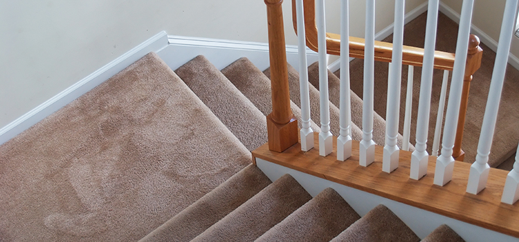 cost-of-carpet-cleaning-5.jpg