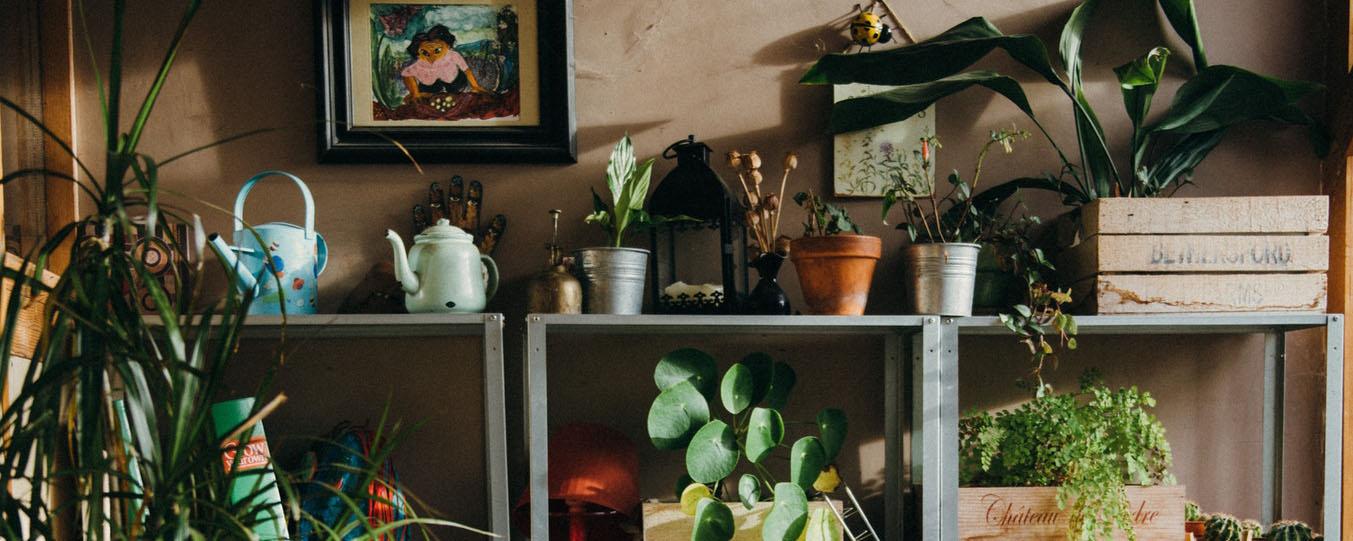 indoor decor.jpg