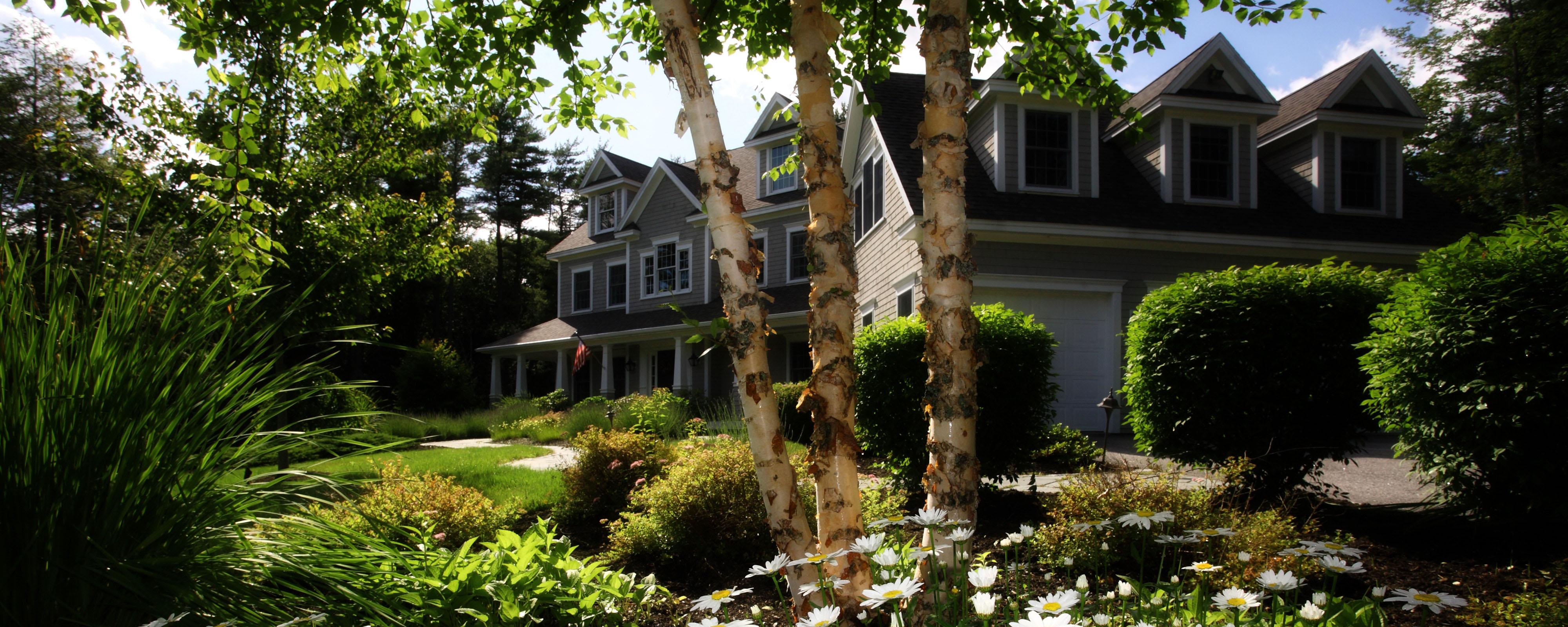 new-homeowner-backyard-inspiration-8.jpg
