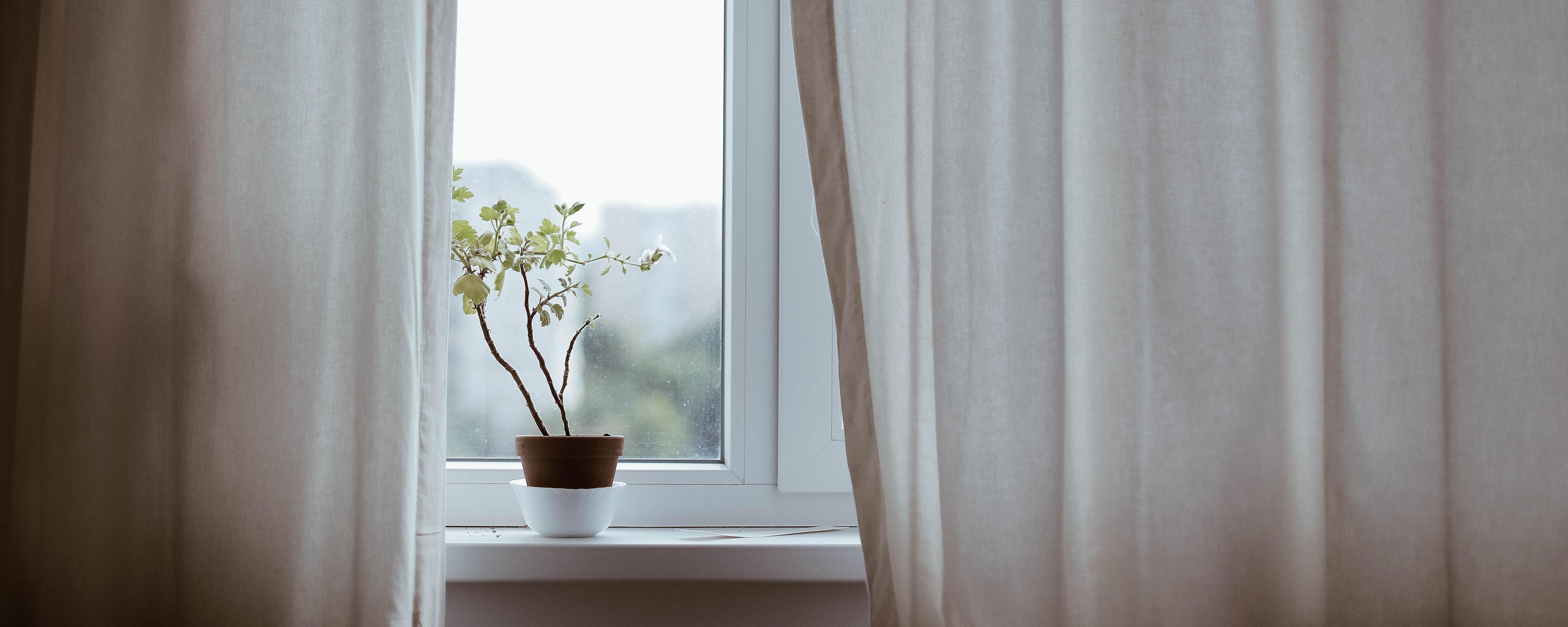 desk window.jpg