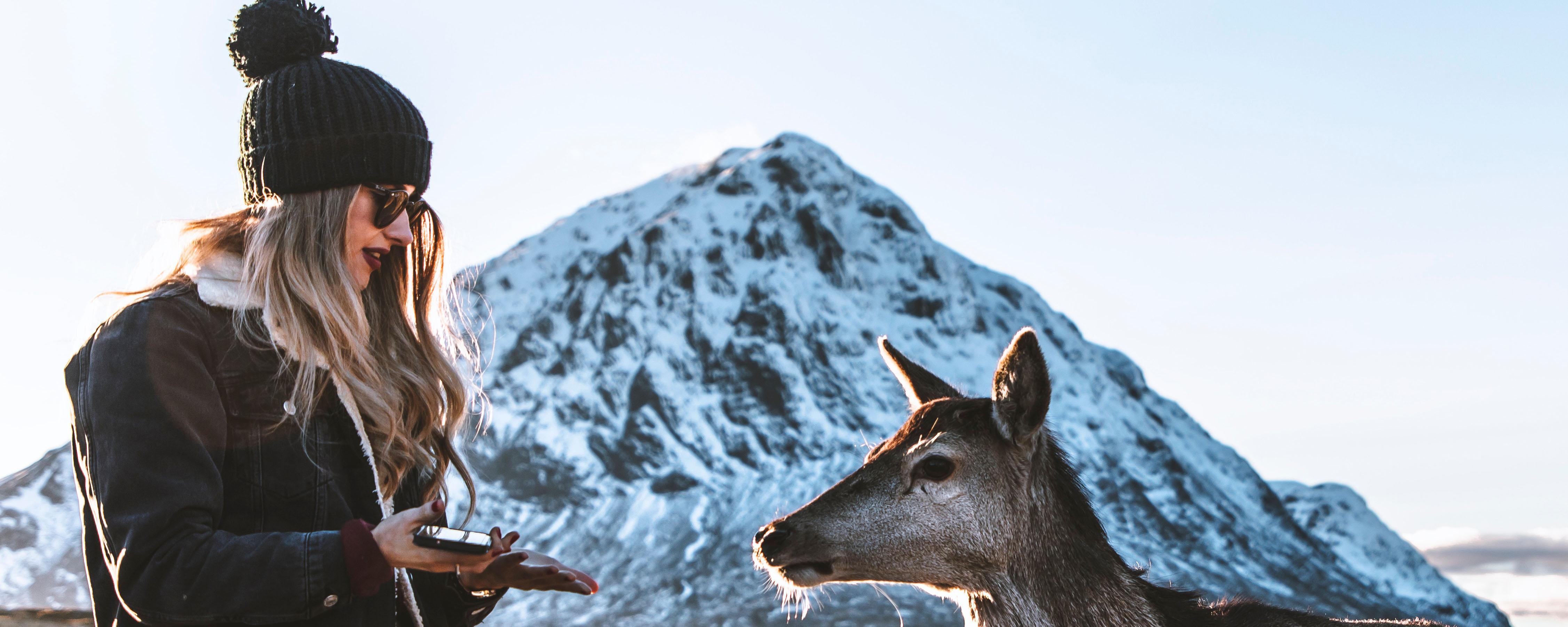 cool deer photo.jpg
