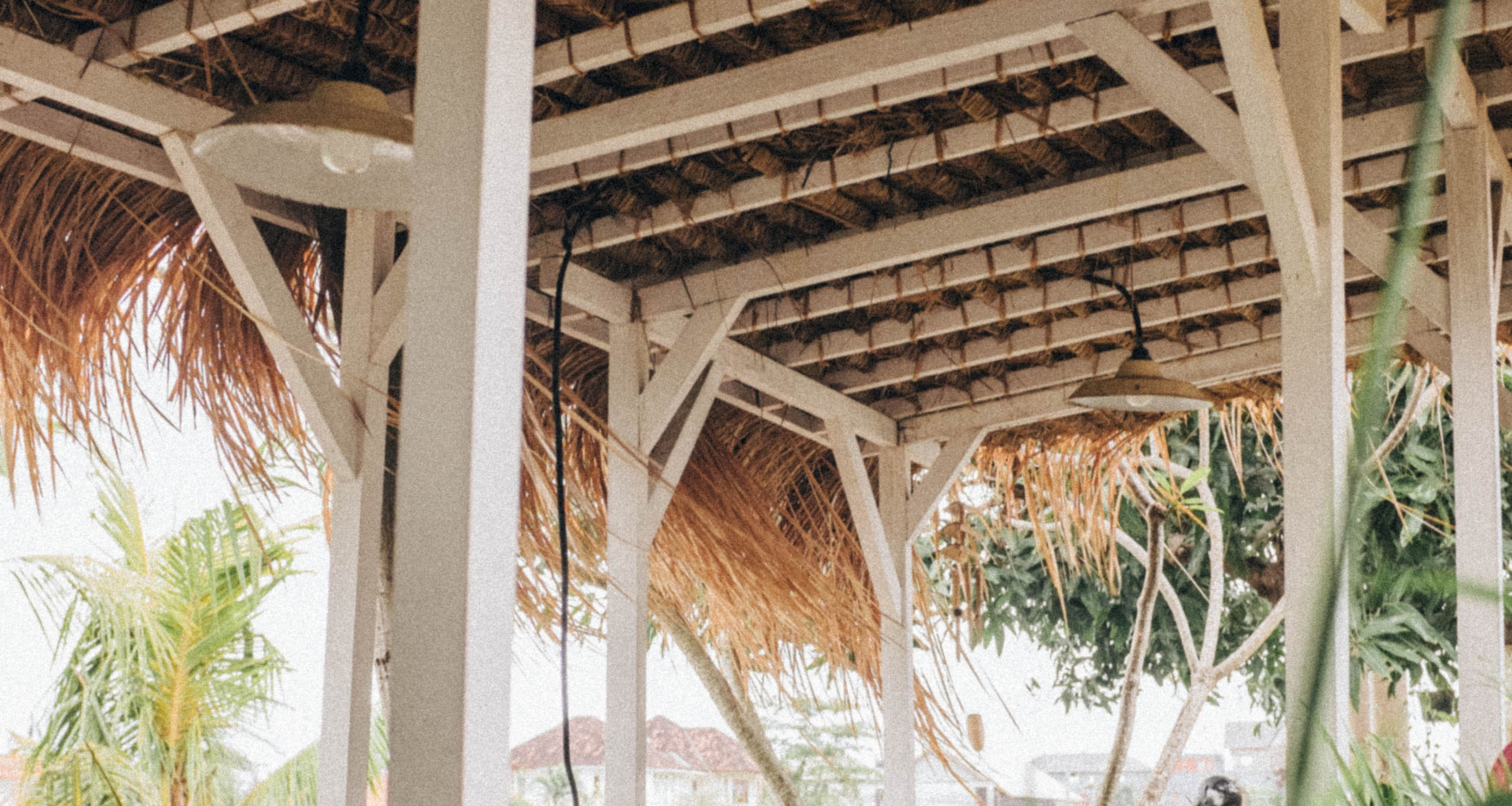 pergola tropical.jpg