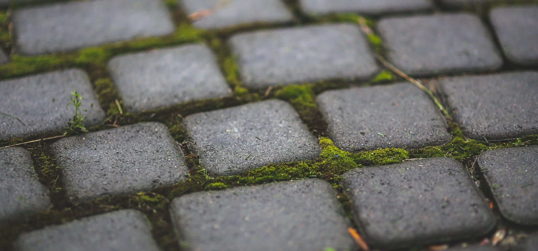 decorative-concrete-vs-pavers-pros-cons-7.jpg