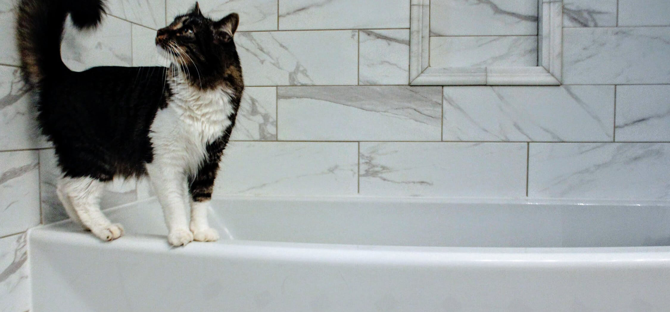 how-to-update-your-bathroom-on-the-cheap by-resurfacing-1.jpeg