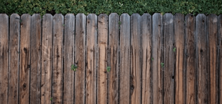 How-much-does-fencing-cost-2019-cost-guide-1.png