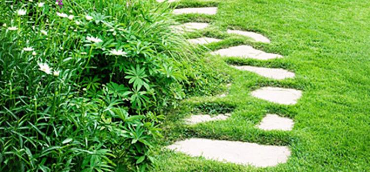 10-inspiring-garden-paths-5.png