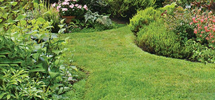 10-inspiring-garden-paths-8.png