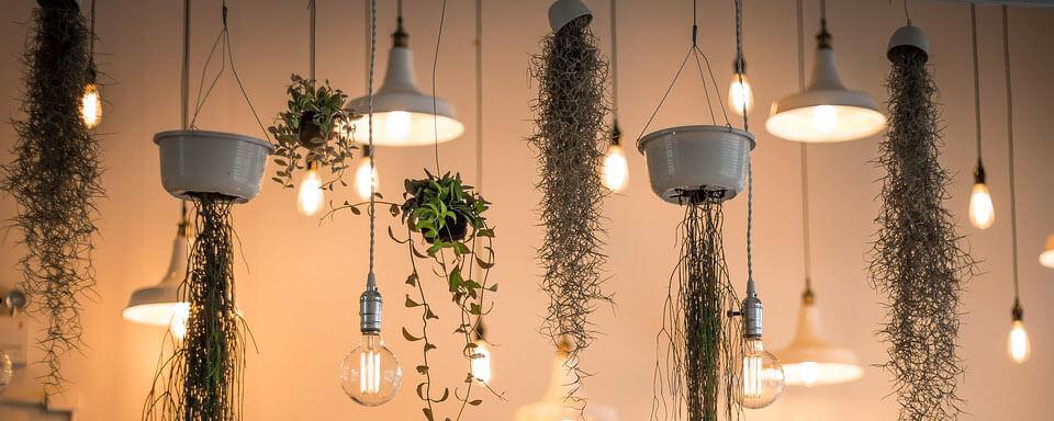 interior-garden-inspiration-3.jpg
