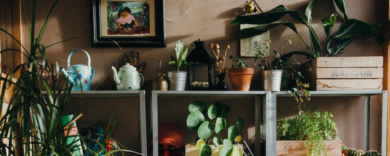 interior-garden-inspiration-1.jpg