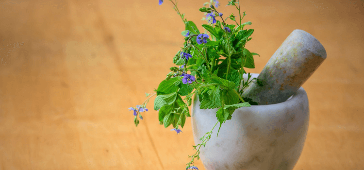6-reasons-your-herb-garden-might-have-failed-7.png