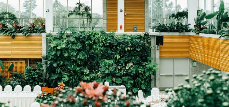 create-an-indoor-vertical-garden-3.png
