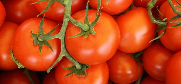 8-beginner-plants-for-edible-gardens-4.png
