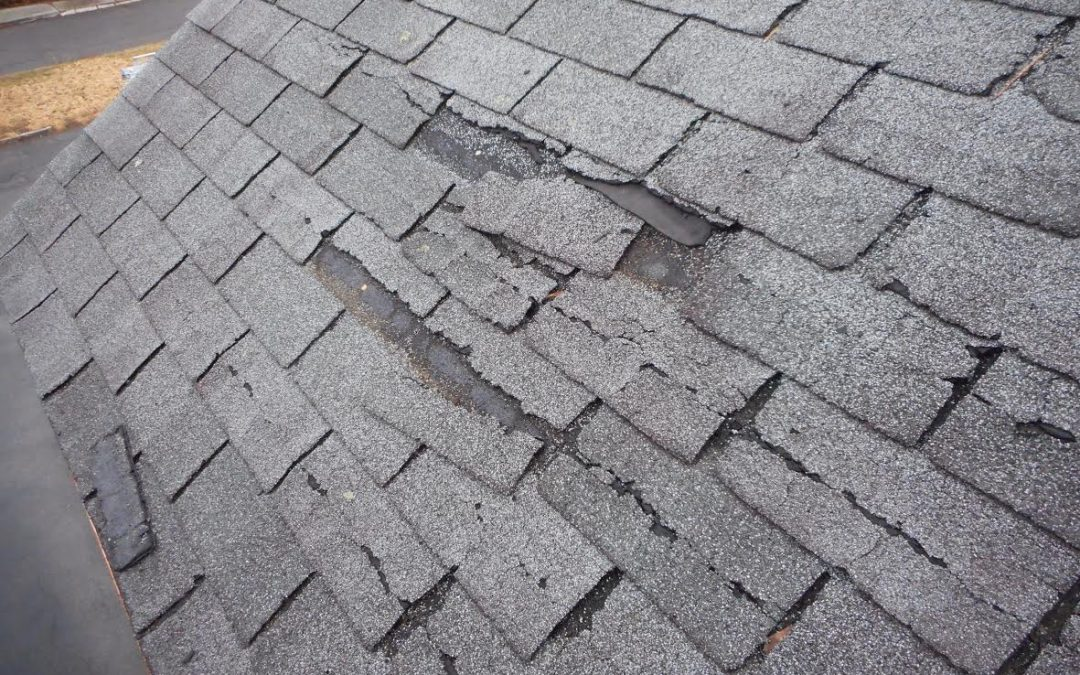 damaged shingles on roof