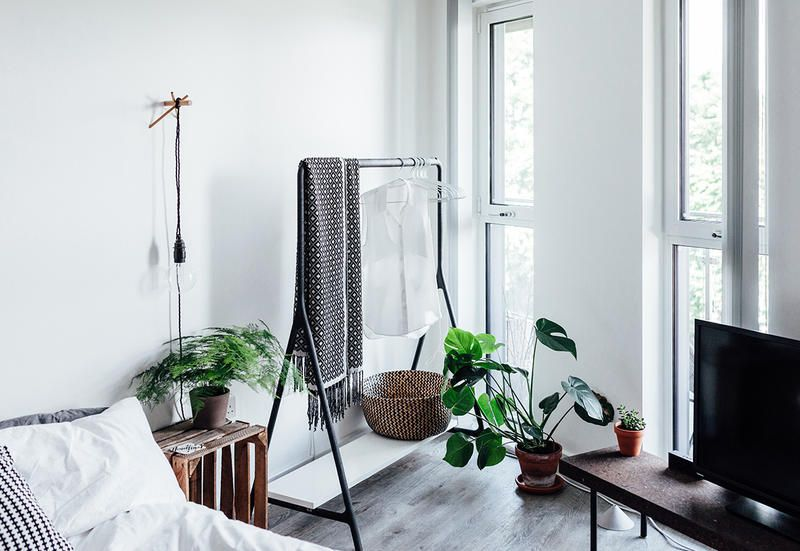 house plants in the bedroom