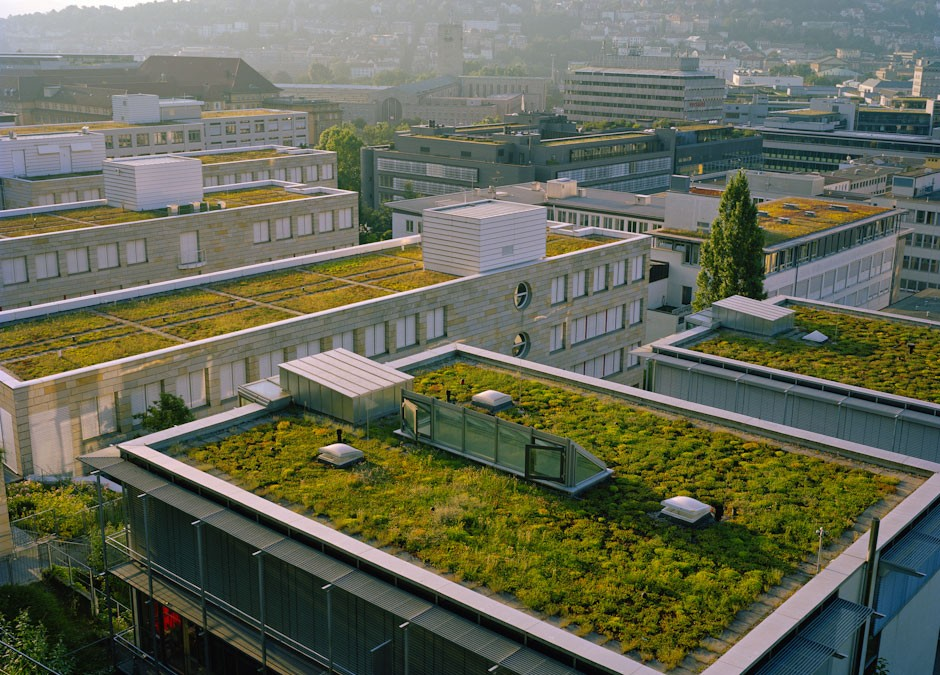 Eco-friendly green roof